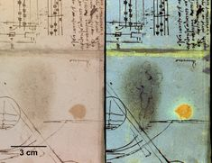 Grazie alle indagini multispettrali, alcuni ricercatori della British Library di Londra sono riusciti a farriemergere uno schizzo cancellato di Leonardo