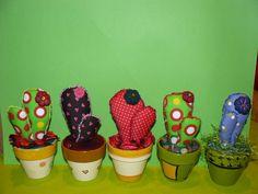 cactus medianos