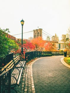 Autumn in New York City - Brooklyn Bridge and Fall Foliage with a beautiful park path in Brooklyn Bridge Park.