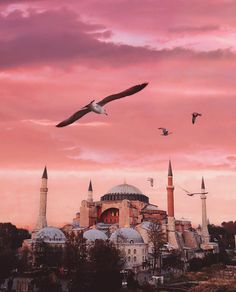 When you hear the name of Istanbul , what comes to your mind first? Visit Istanbul, Istanbul Travel, Hagia Sophia, Nature Pictures, Travel Pictures, Sainte Sophie, Turkey Places, Beautiful Mosques, Turkey Travel
