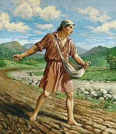 """53. """"Some fell on the rock, and as it grew up, it withered away, because it had no moisture…the ones on the rock are those who, when they hear the word, receive it with joy. But these have no root; they believe for a while, and in time of testing fall away."""" Luke 8.6-13 Images Bible, Bible Pictures, Christian Images, Christian Art, Religious Paintings, Religious Art, Lion Of Judah Jesus, Seed Illustration, Parable Of The Talents"""