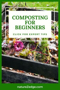 Learn how to Compost with our beginner tips. Composting is the gathering of organic and food waste together into compost piles, or a container to allow the materials to breakdown and become organic material that can be used as mulch or fertilizer in your garden. The completed decomposed earth can be reintroduced into the garden to replenish the soil with the nutrients all plants need to thrive. Learn tips for composting, why to compost and other expert compost tips. Composting   Garden Tips Vegetable Garden For Beginners, Backyard Vegetable Gardens, Vegetable Garden Design, Gardening For Beginners, Garden Tips, When To Plant Vegetables, Growing Vegetables, Organic Gardening Tips, Sustainable Gardening