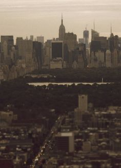 Central Park, facing south; photo by Alberto Reyes