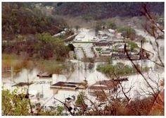 9 Chatteroy Ideas Mingo County West Virginia History West Virginia