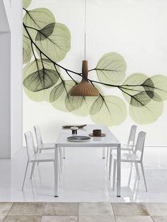 Beyond Light - Eucalyptus - by Albert Koetsier.