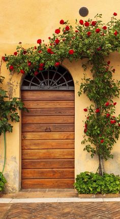 Doorway in Montepulciano - Siena, Italy Eu queroooooo! Cool Doors, The Doors, Unique Doors, Entrance Doors, Doorway, Windows And Doors, Garage Doors, Entrance Ideas, Garage Plans