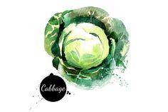 20 Watercolor Vegetables Vector - Illustrations - 2