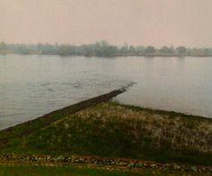 Die Elbe bei Hochwasser in Hoopte