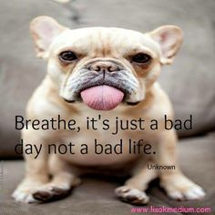 Breathe :)  www.lisakmedium.com https://www.facebook.com/pages/Lisa-Kay-Psychic-Medium/140948049267456