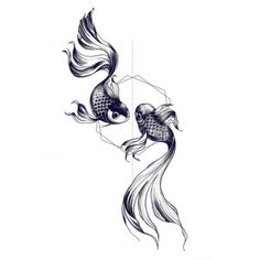 Vente de faux Tatouage éphémère dessin double poisson pas cher sur Tarawa.com achetez vos faux tatouage en toute sécurisé sur notre site de tatouage temporaire                                                                                                                                                     Plus