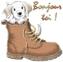 Bonjour toi - Chien - Chaussure - Gif animé Coeur Gif, Cute Animal Illustration, Animal Illustrations, Les Gifs, Gif Animé, Timberland Boots, Dog Days, Scooby Doo, Good Morning