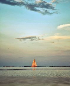 sail boat. I have an obsession