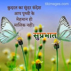 Good Morning Nature Quotes, Positive Good Morning Messages, Good Morning Motivational Messages, Good Morning Wishes Quotes, Good Morning Beautiful Quotes, Good Morning Texts, Morning Inspirational Quotes, Good Morning In Hindi, Hd Images
