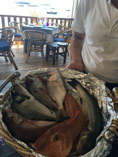 Peixes frescos - Capri, Itália