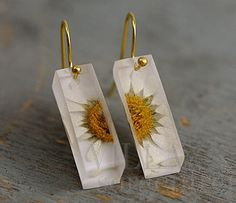SPECIAL OFFER: Real daisy bar earrings. Daisies in transparent resin bar. Gold plated earring hooks. Jewelry for her.