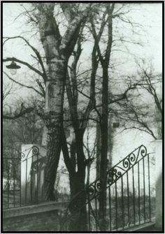 Fáy - 1948-udvar-reszlet.jpg