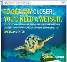 Ripley aquarium coupon code 2018 toronto