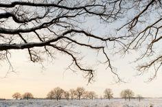 Wilco Dragt: landschapsfotografie in en om Arnhem - Arnhem Direct