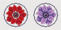 Anemones -
