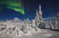Day 17. Silent landscapes of Jyppyrä, Hetta, Finland.