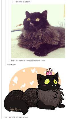 All hail Princess Monster Truck! Cute Little Animals, Cute Funny Animals, Funny Cute, Cute Cats, Hilarious, Funny Animal Memes, Funny Animal Pictures, Cat Memes, Funny Humor