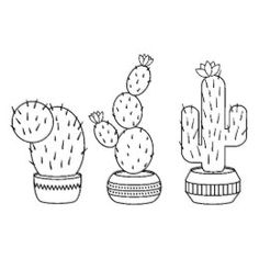 Potted Cacti - Cactus Plants Coloring Page Rubber Stamp - office gifts giftideas business # Cactus Drawing, Plant Drawing, Cactus Art, Cactus Flower, Cactus Plants, Indoor Cactus, Plants Indoor, Indoor Herbs, Succulent Planters