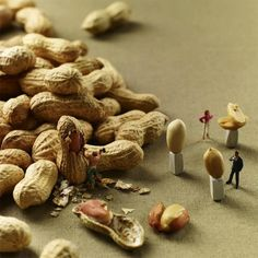 MINIMAM food photography - Pierre Javelle Akiko Ida Since gastronomy fanatics Pierre Javelle and Akiko Ida have been photographing a series of playful dioramas, called MINIMIAM, combining miniature figurines and various kinds of food. Creative Photography, Art Photography, Micro Photography, Amazing Photography, Photo Macro, Miniature Calendar, Miniature Photography, Graphisches Design, Kunst Online