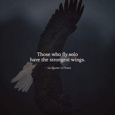 Quotes and Notes - Those who fly alone have the strongest wings. - Quotes and Notes – Those who fly alone have the strongest wings. Attitude Quotes, Mood Quotes, True Quotes, Positive Quotes, Best Quotes, Qoutes, Wing Quotes, Fly Quotes, Meaningful Quotes