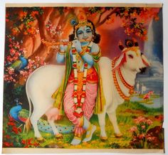 India Vintage Calendar Print Hindu God Krishna with Cow GNGP494 | eBay