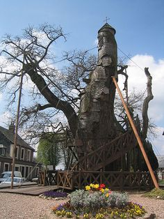 A Tree Chapel! Chene chapelle in France