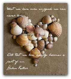 Conchas de mar.