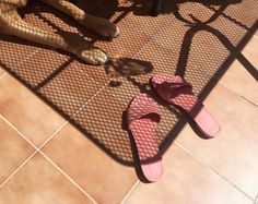 Paws and blush pink Mansur Gavriel sandals on a roof terrace in Spain. / intoIT magazine