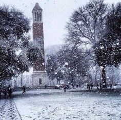 Denny Chimes on The University of #Alabama Quad during snowstorm last week. #RollTide