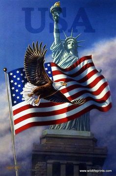 An All-American patriotic print-LIBERTY'S SILENT SCREAM by James Meger. A Bald Eagle, the Statue of Liberty, and the American Flag--all powerful symbols of our great country. The citizens of the Unite Patriotic Pictures, Eagle Pictures, American Flag Pictures, Patriotic Quotes, Patriotic Symbols, Patriotic Crafts, Patriotic Party, July Crafts, I Love America