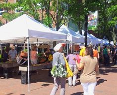 Cambridge / Charles Square Farmers Market i located next to the Charles Plaza, by Harvard Kennedy School and Charles Hotel. (Bennett St At Eliot St, Cambridge). Open Sunday: 10:00 AM to 3:00 PM Friday: 12:00 PM to 6:00 PM
