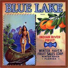 Winter Haven Florida Blue Lake Orange Citrus Fruit Crate Label Art Print Vintage Labels, Vintage Ads, Vintage Posters, Vintage Food, Vintage Crates, Art Posters, Vintage Signs, Travel Posters, Vintage Florida