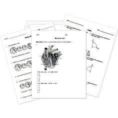 132 best Free Printable Worksheets images on Pinterest
