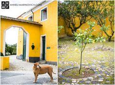 Quinta de Sant'Ana – wine estate wedding venue in Mafra, Portugal. Vineyard Wedding, Destination Wedding Photographer, Portrait Photographers, Wedding Venues, Wedding Photography, Wine, Garden, House, Wedding Reception Venues