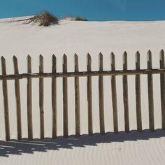Dunes of Praia de Mira. #Portugal