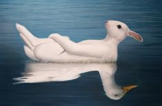 'Rabbit Duck on Pond' made by: Tim O'Brien
