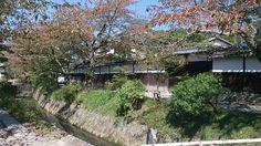 哲学の道 (Philosopher's Path) : 京都市, 京都府