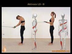 2 - Svalové řetězce Pilates, Health Fitness, Sporty, Exercise, Home Decor, Diet, Text Posts, Physical Therapy, Anatomy