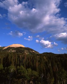The Manti-La Sal National Forest consists of three mountain blocks located in central, eastern and southeastern Utah.