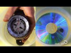 Senses: An Inbuilt Compass - Royal Belgian Institute of Natural Sciences, RBINS Science And Nature, Museum, Diy, Natural, Belgium, Bricolage, Do It Yourself, Science And Nature Books, Museums