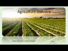 Indian Agriculture is long term growth path