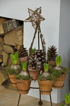 frame / kerst-standaard met terra cotta potjes en hyacint bollen ook leuk met vogeltaart / vogelgebakje