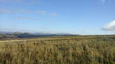 Final views of scotland