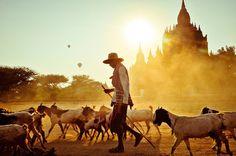 IlPost - © Peter DeMarco/National Geographic   Più di 2.000 templi buddisti e pagode riempiono la città di Bagan. Il modo migliore per vedere Bagan, a parte un giro in mongolfiera, è la bicicletta.