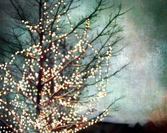 Tis the season for twinkle lights.