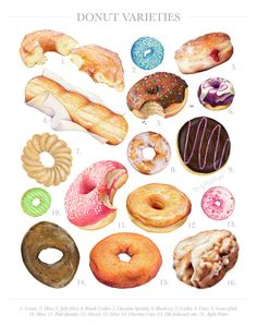 Donut Varieties // Limited Edition Food Illustration // Art Print, Colorful, Pastel, Doughnut